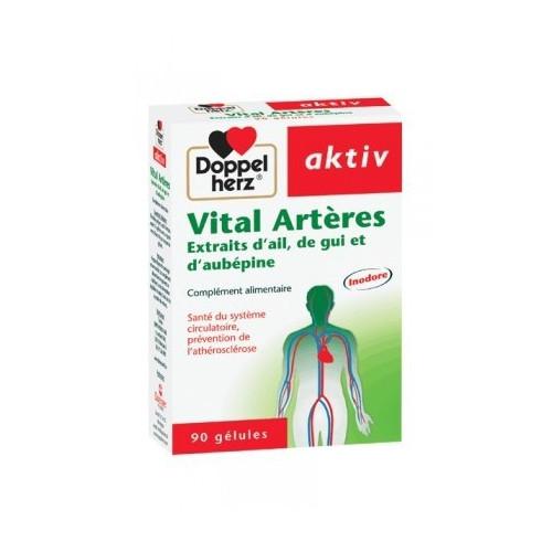 AKTIV VITAL ARTERES, 90 Gélules