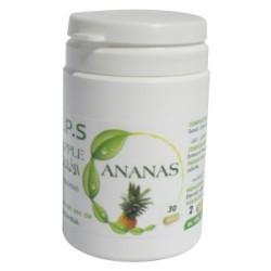 GPS Ananas, 30 gellules